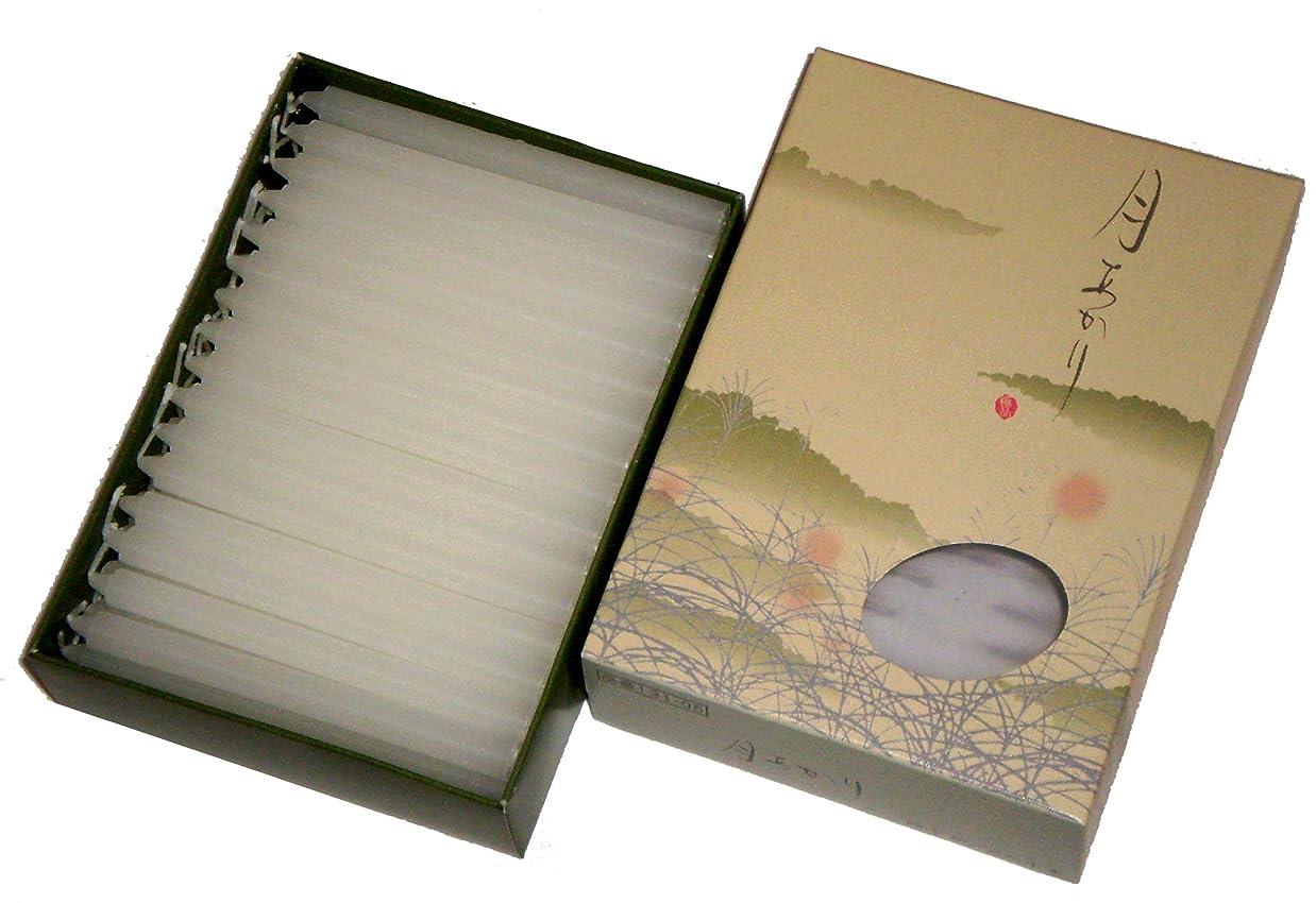 平らな花に水をやるお手入れ東海製蝋のろうそく 月あかり 40分約80本
