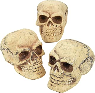 Best halloween skeleton head Reviews