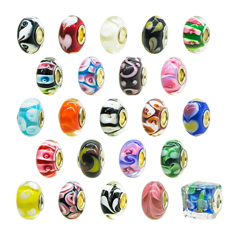 TOAOB 10pcs Assorted Lampwork Glass Beads 14mm Large Hole Fit European Charm