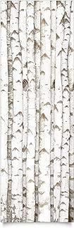Klebefolie - No.YK15 Birke Wand Selbstklebende Möbelabdeckung Designfolie DIY Aufkleber Möbelfolie Glasfolie Holz Overlay Bastelfolie Dekofolie Maße HxB: 100cm x 100cm