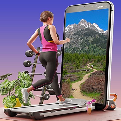 Virtual Fitness TV – Laufband Szenerien