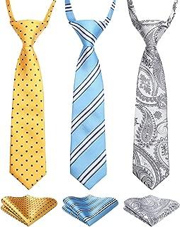 Amazon.es: Multicolor - Corbatas y pajaritas / Accesorios: Ropa