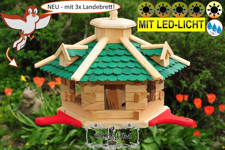 PREMIUM Vogelhaus grün mit Landebahn + LED - Beleuchtung Licht + Anflugbrett,