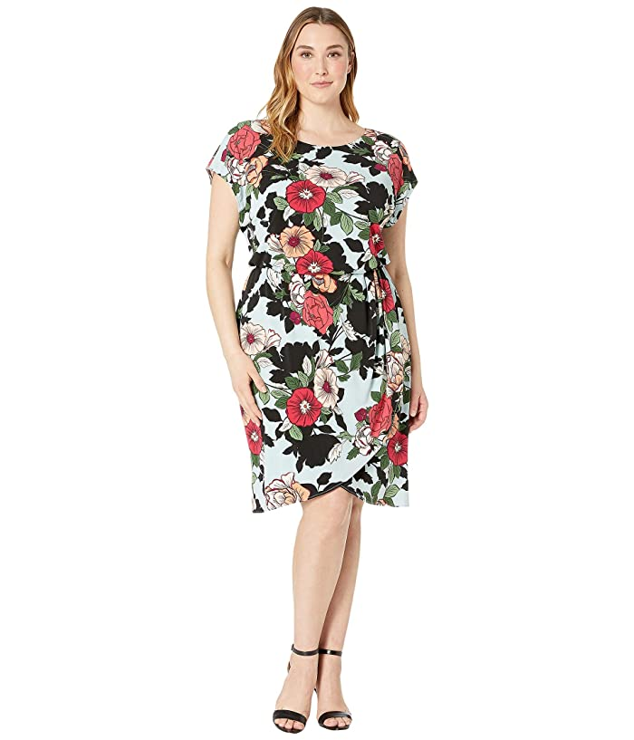 Plus Size Sweet Carolina Hibiscus Blouson Dress
