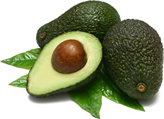 Fresh Hass Avocados/Avocadoes (Box of 15)
