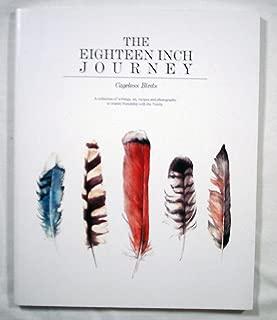 The Eighteen Inch Journey