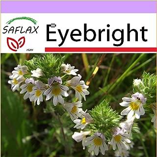 Best euphrasia officinalis seeds Reviews