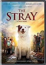 walking the dog dvd