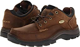 Irish Setter - Borderland Oxford