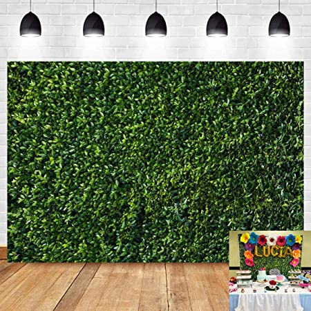 SZZWY Wooden Plank Backdrop 7x5ft Photography Background Green Plant Grass Spring Adults Portrait Kids Newborn Photo Booth Studio Props Wallpaper
