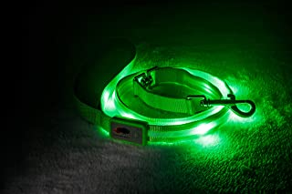 Best rechargeable led dog leash Reviews