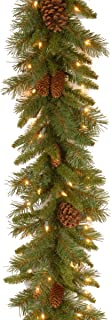 National Tree 9 Foot by 10 Inch Pine Cone Garland with 50 Clear Lights (PC-9GLO-1)