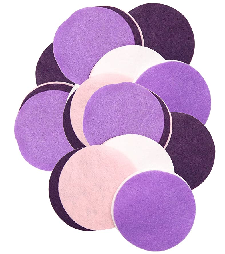 Playfully Ever After 4 Inch 16pc Felt Circles Color Combo Pack with Purple, Dark Purple, Light Pink, White