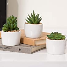 MyGift Artificial Succulent Plants in Modern Round Pots, Set of 3