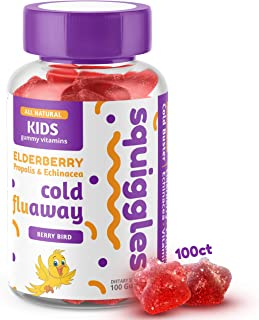 Elderberry Gummies, Bee Propolis, and Echinacea | Kids Cold Fighting Gummies by SQUIGGLES, 100 Count