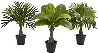Best outdoor palm tree fountain Reviews