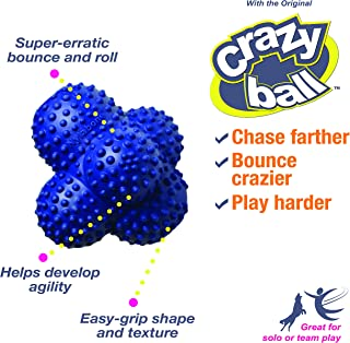 Nylabone Power Play Ball for Dogs - Crazy Ball Large