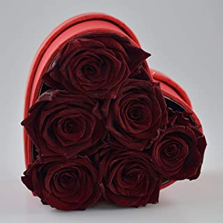 The Touch of Harmony Real Luxury Roses Preserved Flowers Unique Present Gift for Anniversary Birthday Valentines Day Mothers Day Graduation Long Lasting Lasts up to one Year Red Heart Box (Wine)