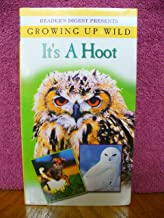 Growing up Wild: It's a Hoot