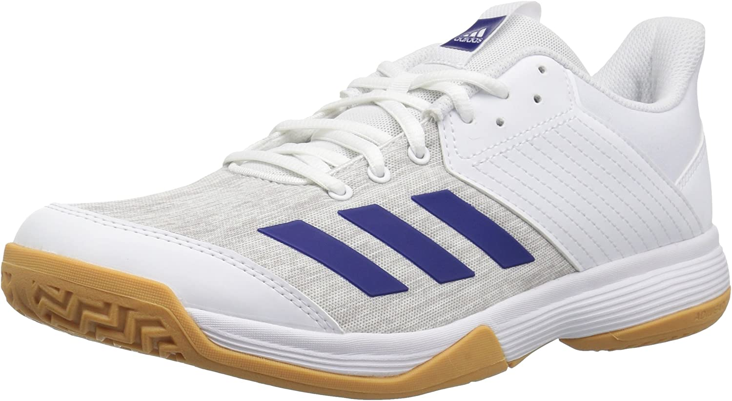 Adidas Mens Ligra 6 Volleyball shoes