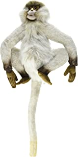 Best spider monkey pet Reviews