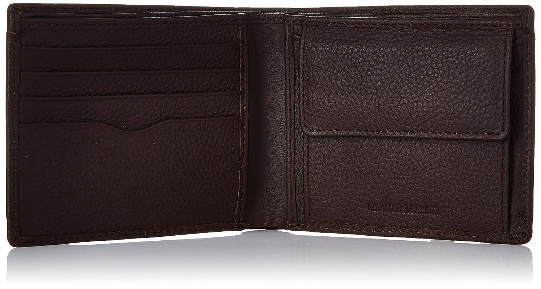TITAN Brown Leather Men's Wallet  TW162LM1BR