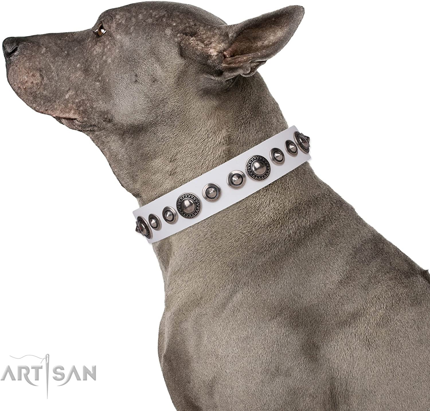 FDT Artisan 36 inch White Leather Dog Collar with Old Silver Like Decor  Ice Age  Gift Box Included  1 1 2 inch (40 mm) Wide