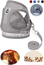 GAUTERF Dog and Cat Universal Harness with Leash Set, Escape Proof Cat Harnesses –..