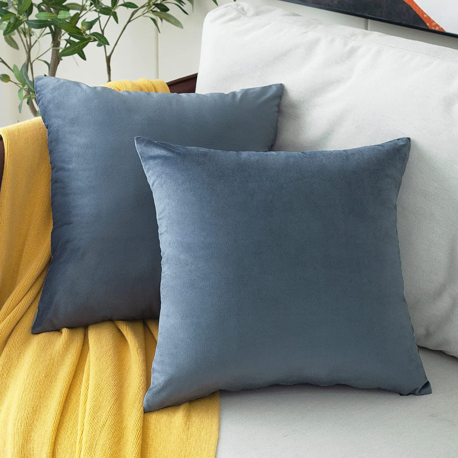 MUDILY Pack of 2 Velvet Supersoft Ranking TOP20 Throw Decorative Pillow Square Outlet SALE
