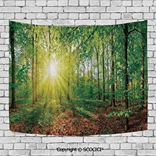 Wall Tapestry Hanging 3D Printing Tree Tapestry Wall TapestryLiving Room Bedroom,Farm House Decor,Glade in the Forest at Sunset Evening Meadow Greenland Mother Earth Wildlife Picture,Green Brown