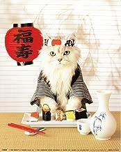 Sushi Cat Wall Decor Japanese Cute Funny Kitten Art Print Poster (16x20)