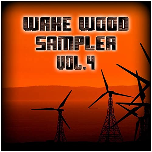 Wake Wood Sampler Vol  4 by Various artists on Amazon Music - Amazon com