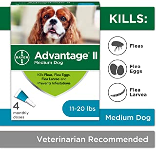 Bayer Advantage II Topical Flea Treatment for Medium Dogs, 11-20 lbs