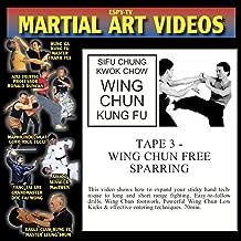 WING CHUN KUNG FU 3 - WING CHUN FREE SPARRING