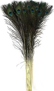 comprar comparacion BELLE VOUS Plumas Pavo Real Pack de 20-76-88cm de Largo Plumas de Decoracion Coloridas con Ojo para Decoración del Hogar, ...