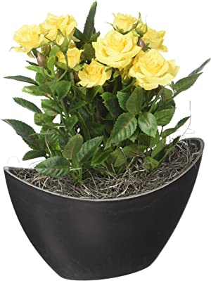 Vickerman F12227 Yellow Rose Everyday Floral