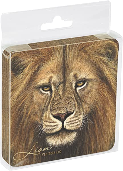 Tree Free Greetings ECO Coasters Box Set Of 4 Drink Coasters 3 5 X 3 5 Inch African Lion EC52713