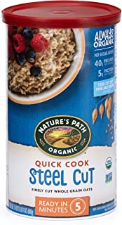 Nature's Path Quick Cook Steel Cut Oatmeal, Healthy, Organic & Sugar Free, 1 Canister, 24 Ounces (Pack of 6)
