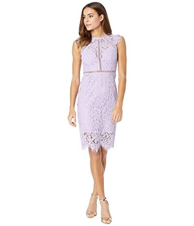 Bardot Lace Panel Dress (Light Purple) Women