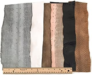 Snake Skin Snakeskin Pieces; Grab Bag! Assorted Colors, 6 Feet, 6 Pieces