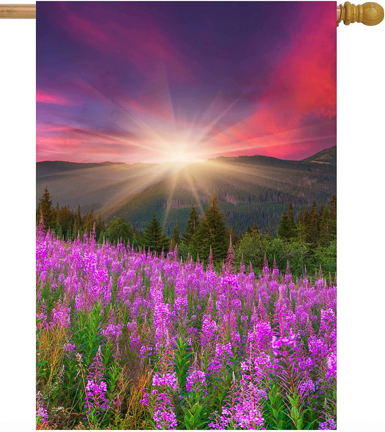 Some reservation Mesa Mall ShineSnow Mountains with Pink Floral Autum Summer Spring Flowers