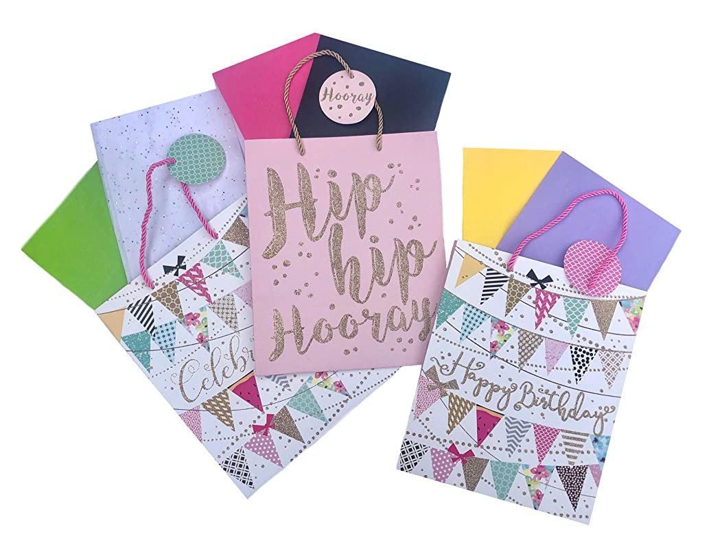 Gift Bags Set of 3 Celebrate Happy Birthday Flags,Hip Hooray! Gold Glitter Embellished.