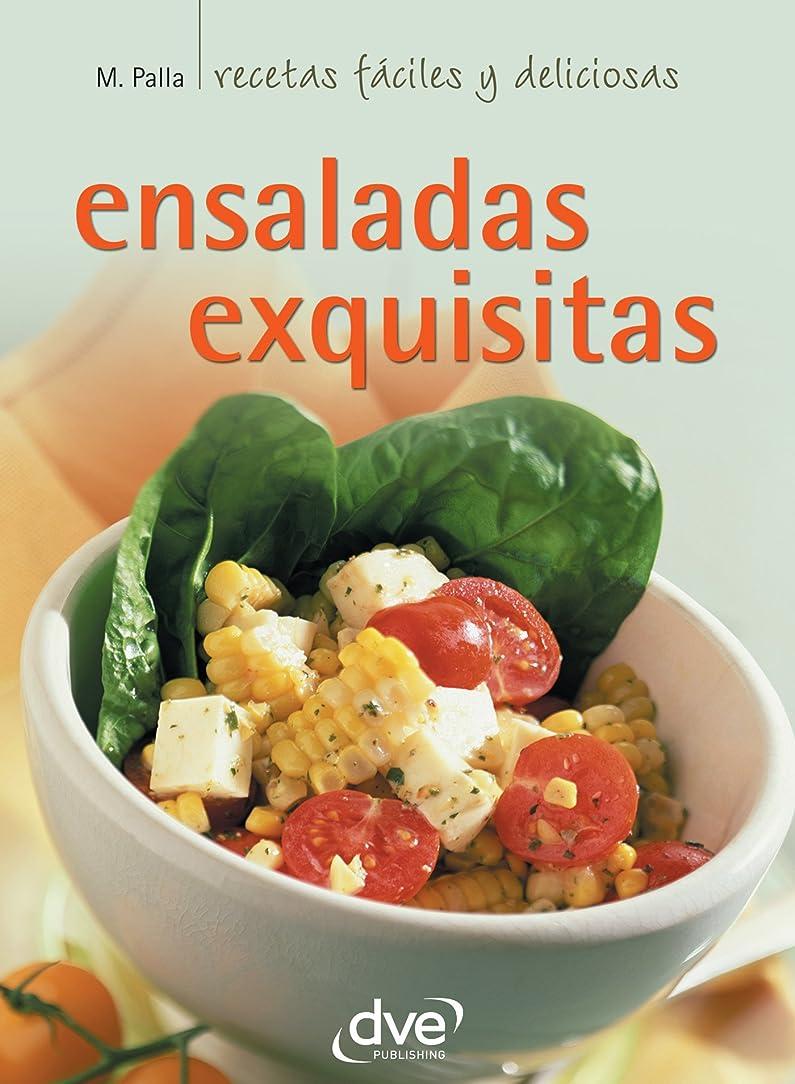 迫害配管工ヘルメットEnsaladas exquisitas (Spanish Edition)