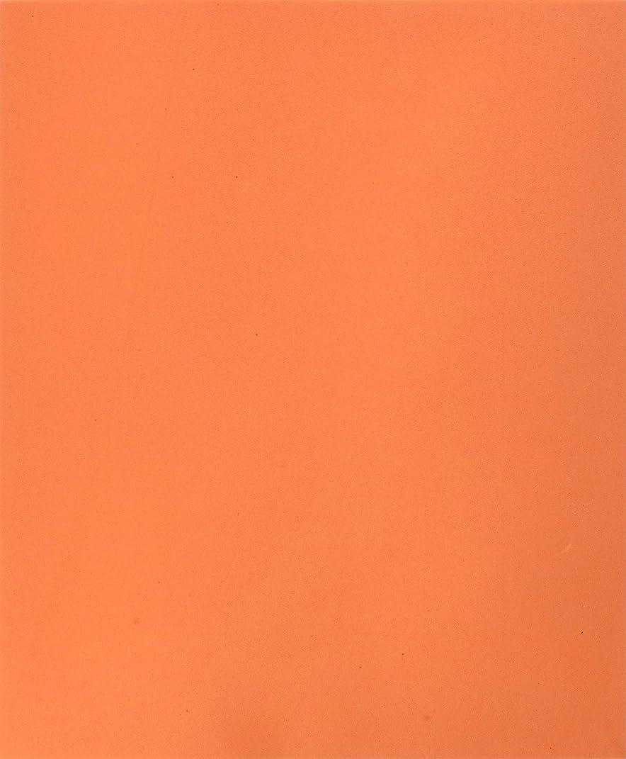 Homeford FNS000007390ORNG Foam Sheet, 9-1/2