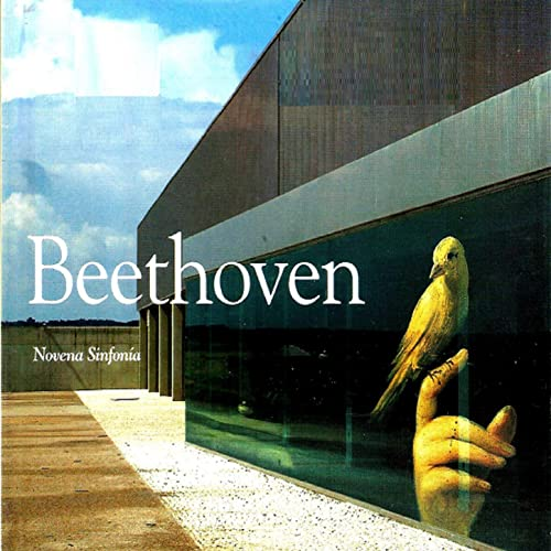 Beethoven Novena Sinfonía Various Artists Mp3 Downloads