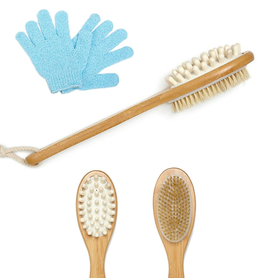 Exfoliating Brush by EverSpa | Dry Body Brush with Natural Boar Bristles and Massager with Exfoliating Gloves, Reduce Cellulite and Dry Skin, Increase Circulation