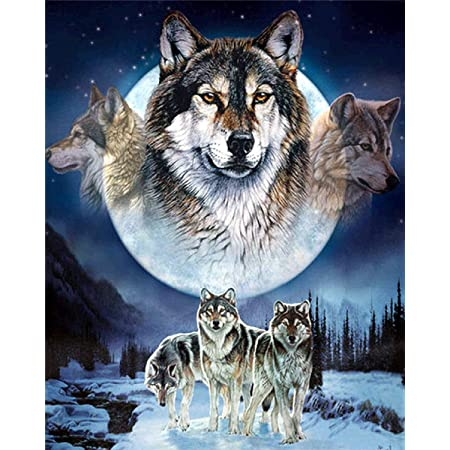 Fighting Wolves 12X16inch Full Drill Embroidery Paint with Diamonds Wall Sticker for Home Wall Decor DIY 5D Diamond Painting