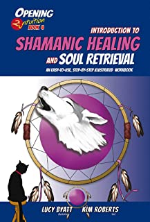 Introduction to Shamanic Healing and Soul Retrieval: An Easy-to-Use, Step-by-Step Illustrated Guidebook (Opening2Intuition 4)