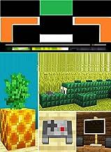 7-MORE-SECRET-Build-HACKS-in-Minecraft: The Best Kid book of 2021