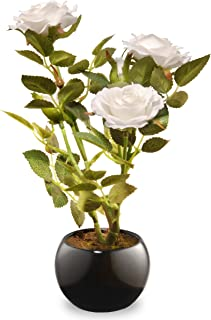 National Tree 9.5 Inch White Rose Flowers with Black Round Ceramic Base (NF36-5157P-1)